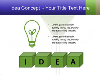 0000074257 PowerPoint Templates - Slide 80