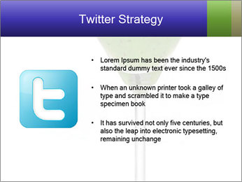 0000074257 PowerPoint Templates - Slide 9