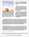 0000074258 Word Templates - Page 4