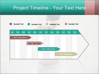 0000074261 PowerPoint Templates - Slide 25