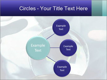 0000074262 PowerPoint Templates - Slide 79