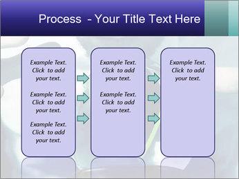 0000074262 PowerPoint Template - Slide 86