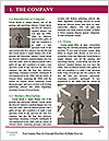 0000074263 Word Template - Page 3