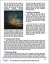 0000074265 Word Template - Page 4