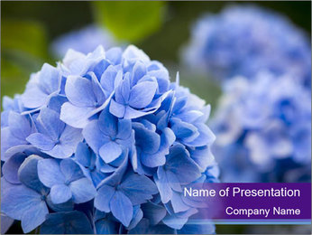 0000074266 PowerPoint Template