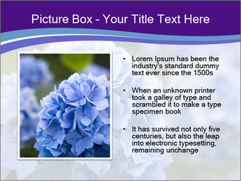 0000074266 PowerPoint Template - Slide 13