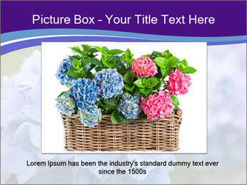 0000074266 PowerPoint Template - Slide 15