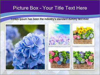 0000074266 PowerPoint Template - Slide 19