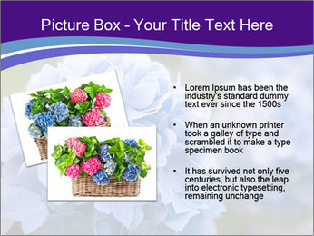 0000074266 PowerPoint Template - Slide 20