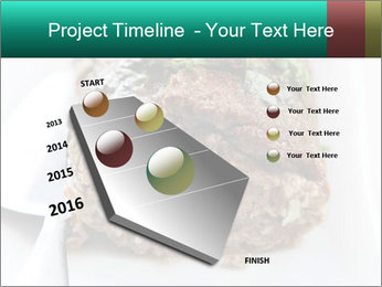 0000074270 PowerPoint Template - Slide 26