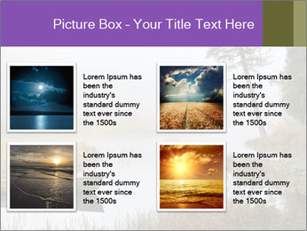 0000074276 PowerPoint Templates - Slide 14