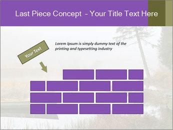 0000074276 PowerPoint Templates - Slide 46