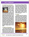 0000074276 Word Template - Page 3