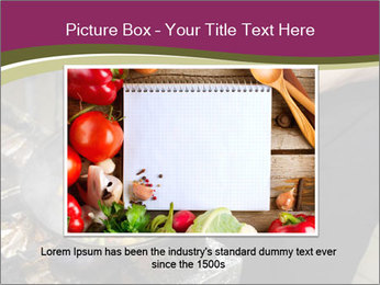 0000074281 PowerPoint Template - Slide 15