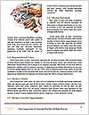 0000074281 Word Template - Page 4