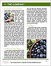 0000074282 Word Templates - Page 3