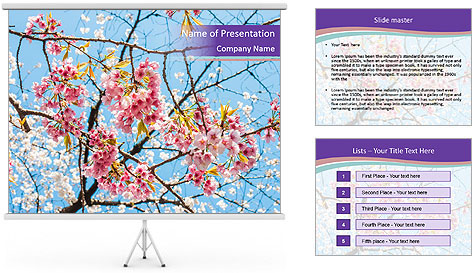 0000074300 PowerPoint Template