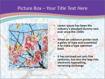 0000074300 PowerPoint Template - Slide 13