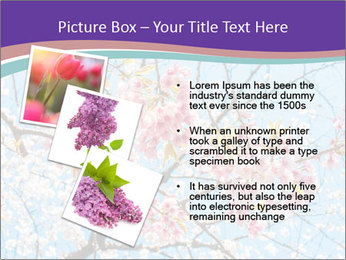 0000074300 PowerPoint Template - Slide 17