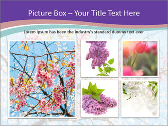 0000074300 PowerPoint Template - Slide 19