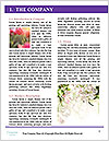 0000074300 Word Templates - Page 3