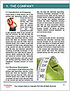 0000074303 Word Template - Page 3