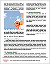 0000074303 Word Template - Page 4