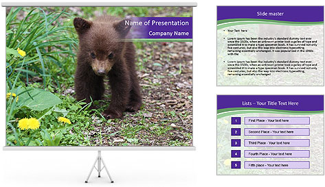 0000074305 PowerPoint Template