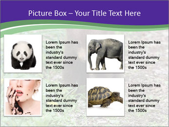 0000074305 PowerPoint Template - Slide 14