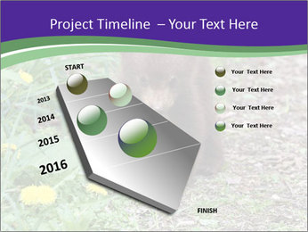 0000074305 PowerPoint Template - Slide 26
