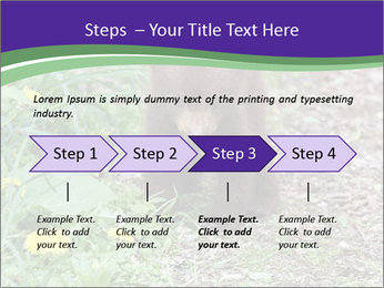 0000074305 PowerPoint Template - Slide 4
