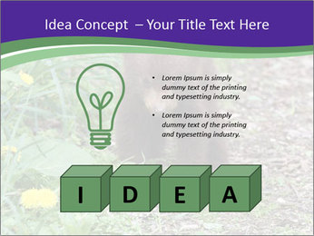 0000074305 PowerPoint Template - Slide 80