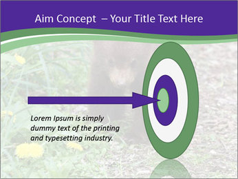 0000074305 PowerPoint Template - Slide 83