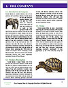 0000074305 Word Templates - Page 3