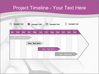 0000074306 PowerPoint Template - Slide 25
