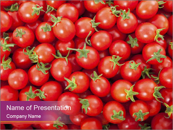 0000074311 PowerPoint Templates - Slide 1