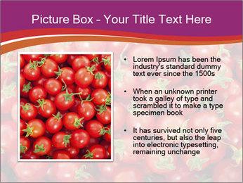 0000074311 PowerPoint Templates - Slide 13