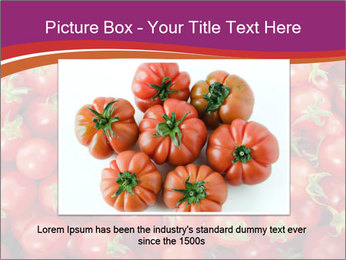 0000074311 PowerPoint Template - Slide 16
