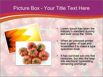 0000074311 PowerPoint Templates - Slide 20