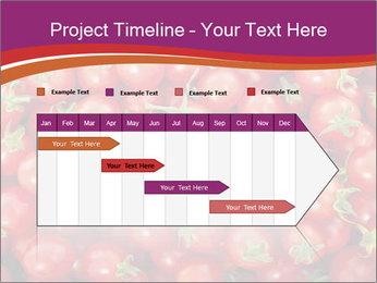 0000074311 PowerPoint Templates - Slide 25