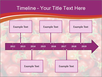 0000074311 PowerPoint Template - Slide 28