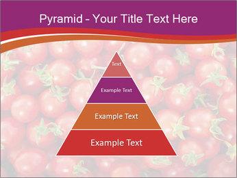 0000074311 PowerPoint Template - Slide 30
