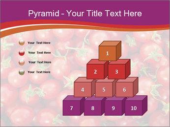 0000074311 PowerPoint Templates - Slide 31