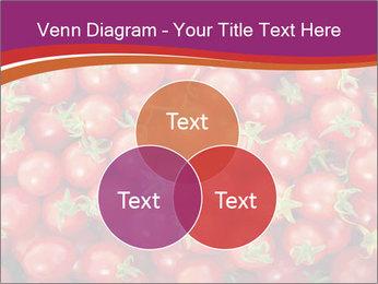 0000074311 PowerPoint Templates - Slide 33