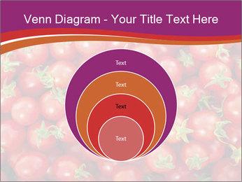 0000074311 PowerPoint Templates - Slide 34