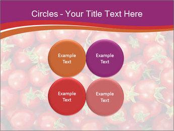 0000074311 PowerPoint Templates - Slide 38