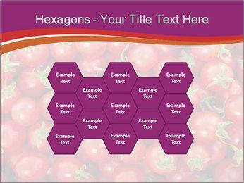 0000074311 PowerPoint Templates - Slide 44