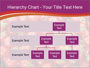 0000074311 PowerPoint Template - Slide 67