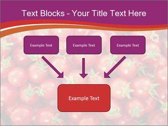 0000074311 PowerPoint Template - Slide 70