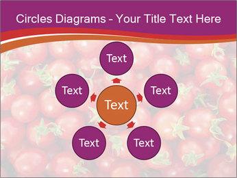 0000074311 PowerPoint Templates - Slide 78